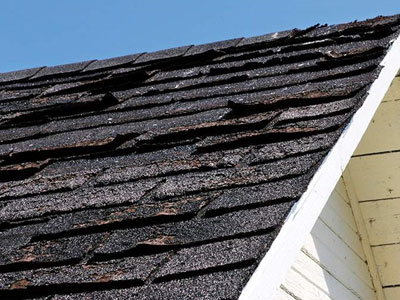 Certified Roofing & Siding Specialist Images